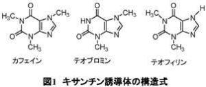 チョコレート製品のカフェイン及びテオブロミン含有量の測定/岸弘子/神奈川県衛生研究所